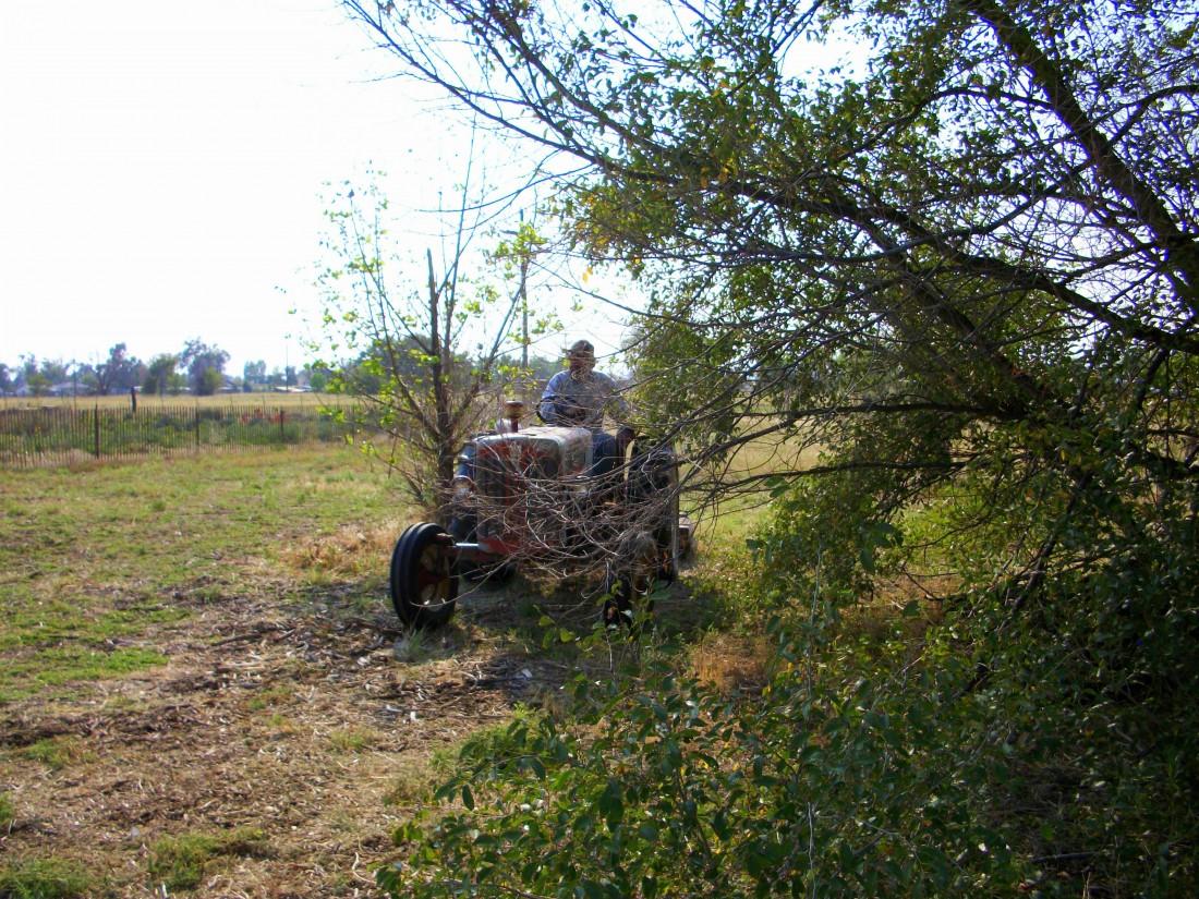 tractor on organic farm.
