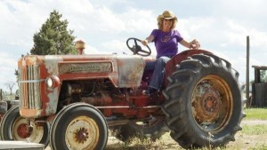 Lily on tractor